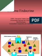 4. Ciclos endocrinos F