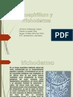 agroecologia (1) (1) 3