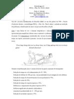 PDCA Metodologia A3 Segundo Pedro Salvada