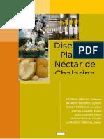 282915551-Diseno-de-Planta-Nectar-de-Chalarina.docx