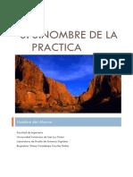 Formato de Reporte de Practicas DSD