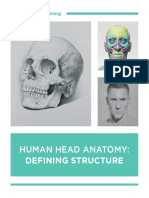 01 Human Head Anatomy Defining Structure