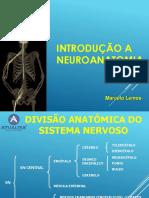 2- Revisão Anatomia Crânio