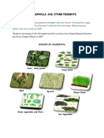 Chlorophylls and Other Pigments