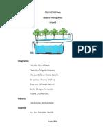 Proyecto hidroponía fase4.docx