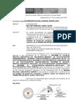 Informe Ig Medidas de Proteccion