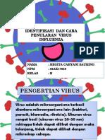 Regita (Identifikasi Dan Cara Penularan Virus)