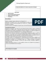 Formato de Documento 1a Entrega. (2)