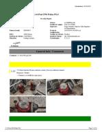 InspectionReport (1)
