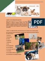 Ley de Protección a Los Animales Del Distrito Federal 1