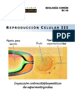 9 Reproduccion Celular III
