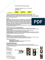 Clasificacion AO - Modificada