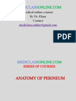 Anatomy Perineum.pptx