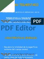 Piel Drmontalvo Copiar