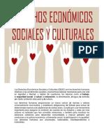Derechos Economicos y Sociales