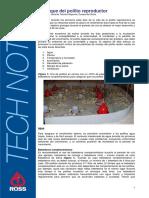 ArranqueDelPollitoReproductor.pdf