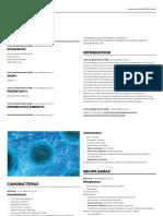 Padlet Microbiologia