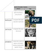 copy of  resources in ecosystems   vocabulary