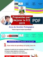 Propuestas Para Mejorar La ECE 2019 (2)