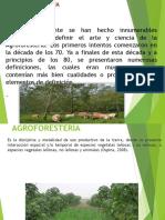 Agroforestería, Tala de Árboles y Sierra Verde