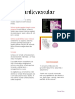 Histologia Cardiovascular PDF