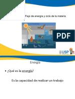 Flujo de La Energia(1)