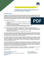 Normas internacionais à prática profissional de auditoria interna