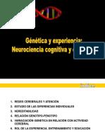 Genética y Experiencia