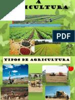 Agricultura no mundo II - 19-20