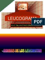 008 Inter Leucograma