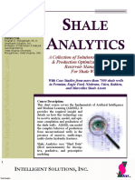 2019 Shale Analytics.pdf