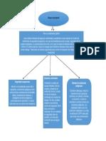 mapa conceptual-ANYERSON WILFREDO PIZO OSSA.docx