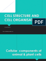 2 1 Cell Structure and Function