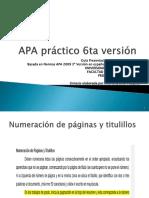 APA Pr Ctico 6ta Versi N-lilly1