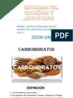 Carbohidratos, Proteina y Aminoacidos