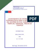 Levantamiento de Información Hidrogeológica Para La Modelación Del Acuífero de Pica, Cuenca de La Pampa Del Tamarugal, Región de Tarapacá_Informe Final_sit294
