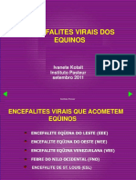Ivanete Encefalites Wrd 2011