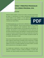 principios procesales  de codigo procesal civil
