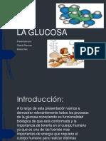 Glucosagabrielramirez Elianadiazmv b 150519155830 Lva1 App6891