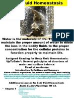 MP 3 & 4 Body Fluid Homeostasis HO2019