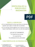 Psicopatologia de La Percepción e Imaginación