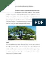FLORA Y FAUNA DE LA REGIÓN LA LIBERTAD.docx