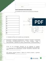 articles-26567_recurso_docx.docx