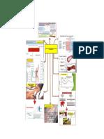 Infograma de Fisica -Principios Fisicos