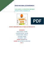 INFORME DE SEGURIDAD -SCTR.docx