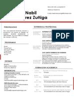 51 Curriculum Vitae Riaz Actualizado