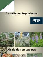 Alcaloides en Leguminosas.pptx