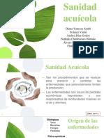 SANIDAD PECES 2