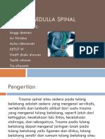 Cedera Medulla Spinal