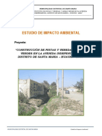 c) Informe de Impacto Ambiental